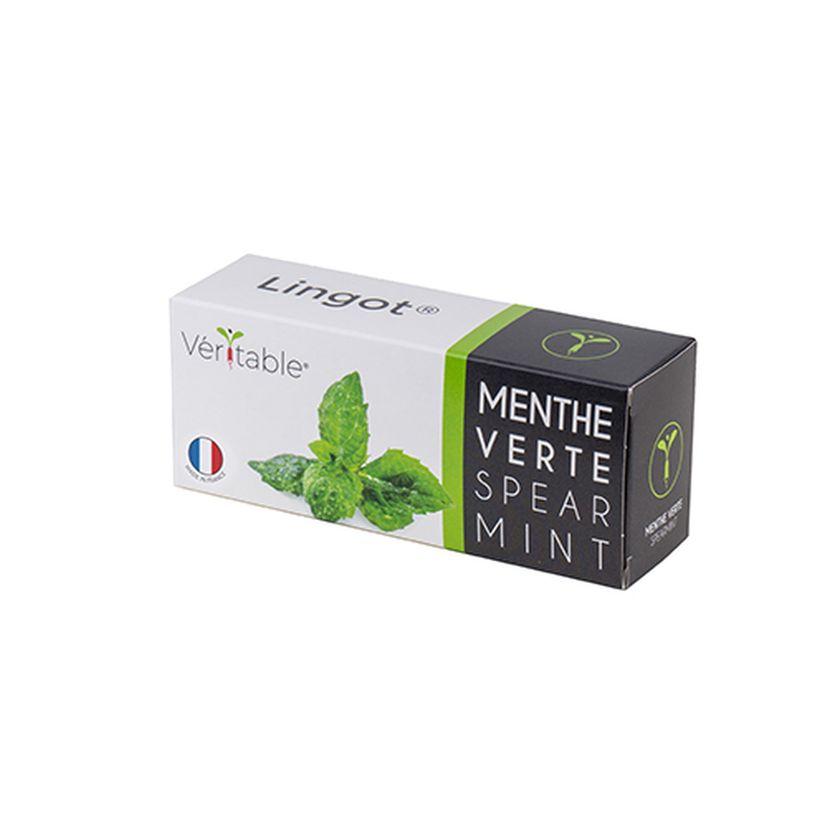 Recharge pour potager d´intérieur Véritable menthe verte bio- Véritable