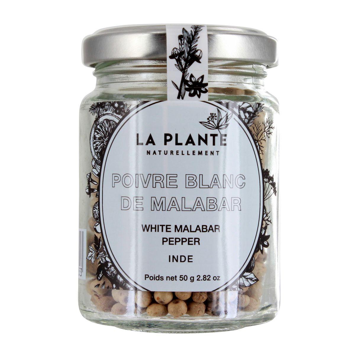 Poivre blanc malabar BIO - La Plante