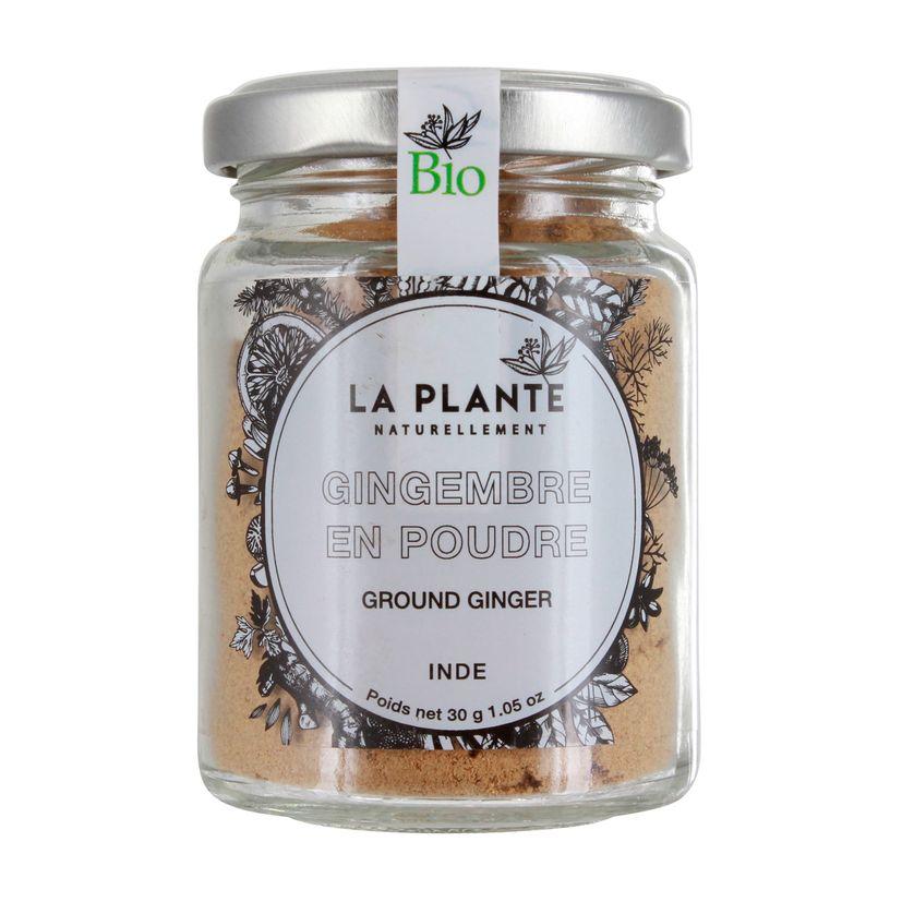 Gingembre en poudre BIO 30g - La Plante